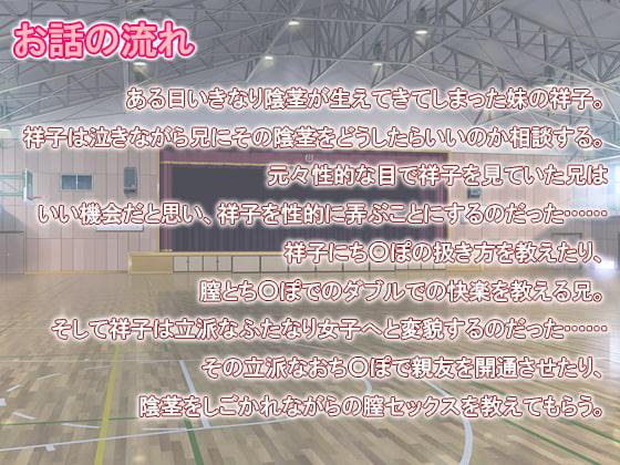 【PDF・jpg】大変だ!妹におち○ぽが生えちゃったぞ!!!
