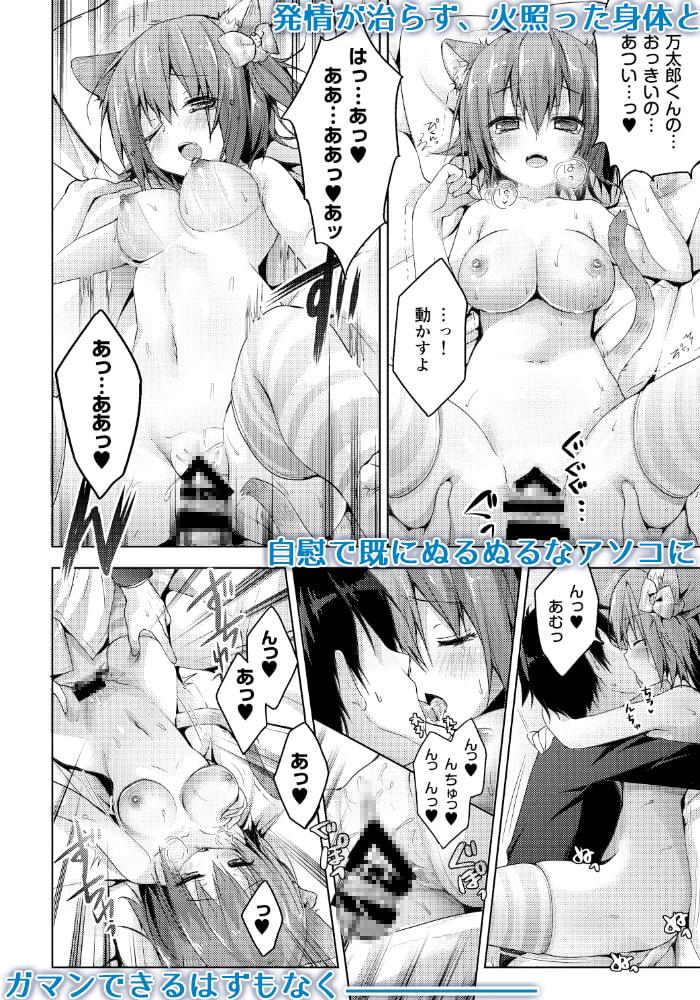 ニャンコロジ2.01 -猫田さんとヒミツの朝事情-