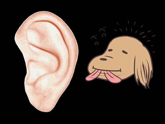 耳舐め 3