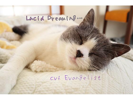 RJ277914 [20200211]ASMR■Lucid Dreaming…