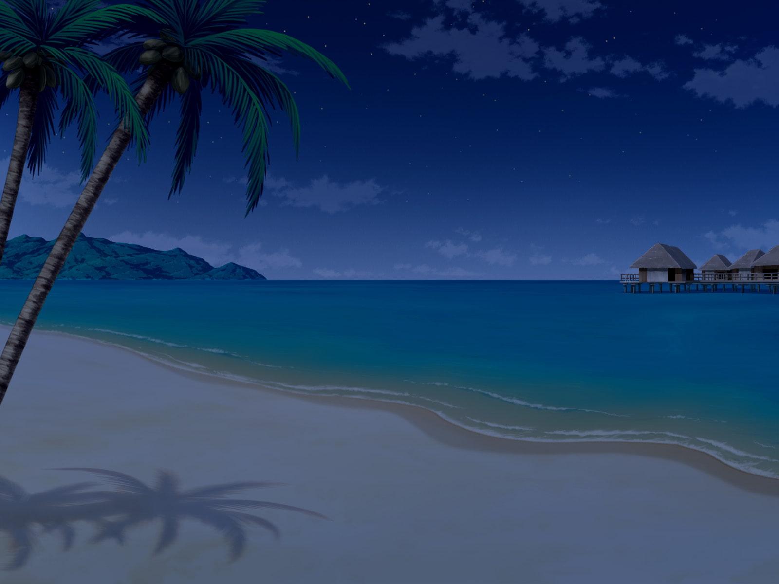 フリー背景素材 海 南国