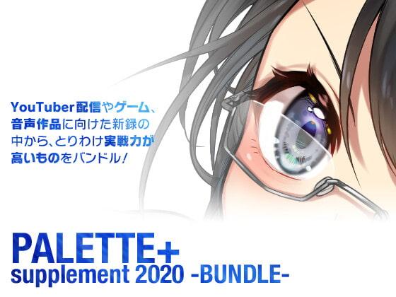 RJ300578 PALETTE 2020 [20201202]