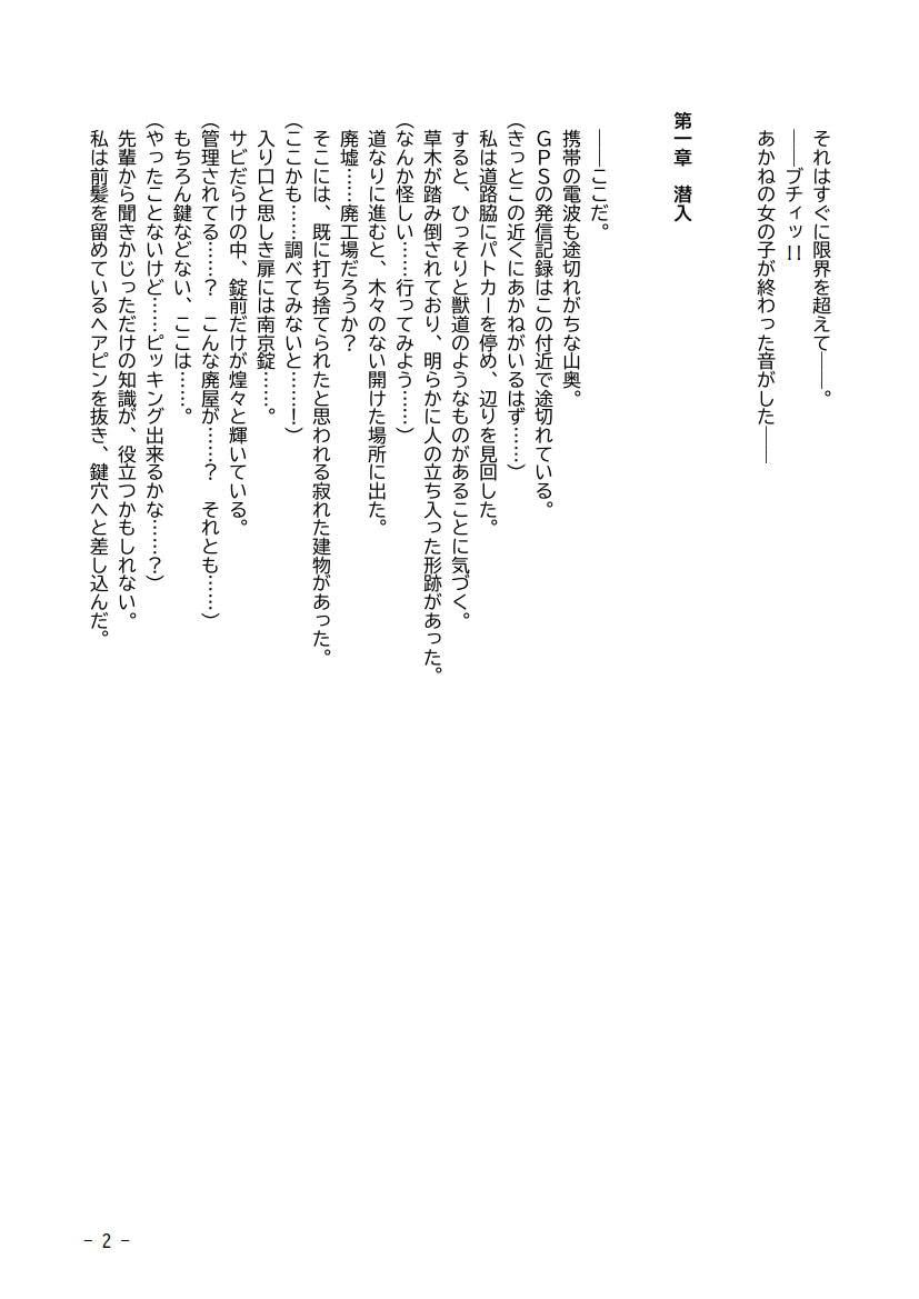 RJ314065 性犯罪調書 汚された女性たち ~コンプリートセット~ [20210220]