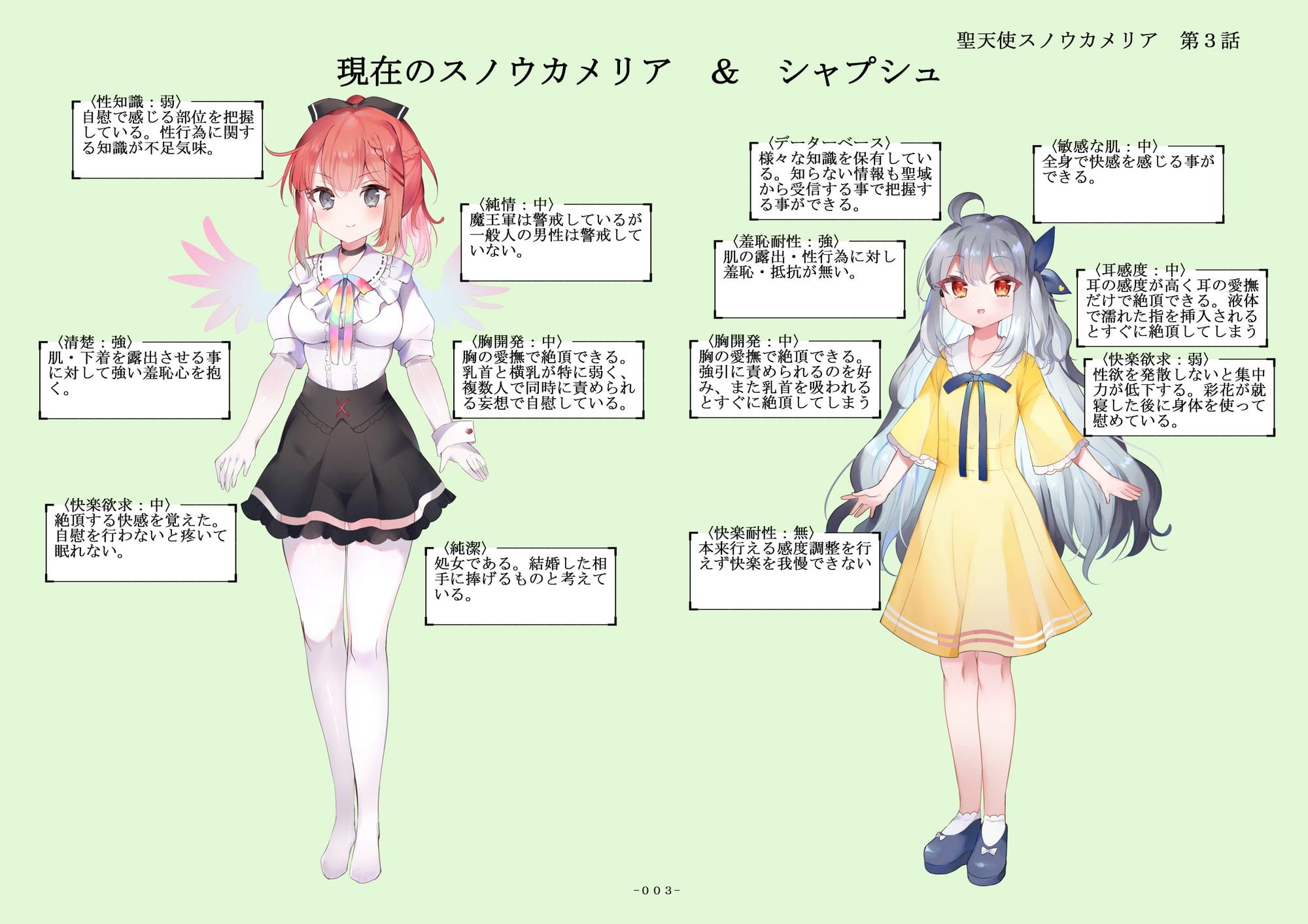 聖天使スノウカメリア 第3話「操心人形劇」