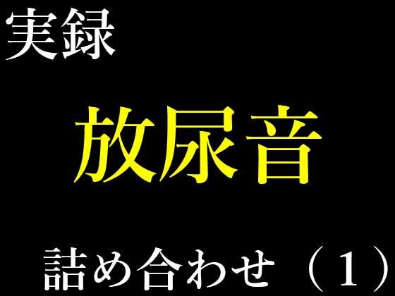 実録放尿音10種詰め合わせ(1)