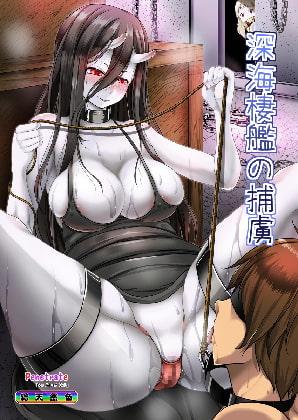 【新着同人誌】深海棲艦の捕虜のトップ画像