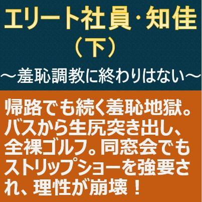 RJ344409 エリート社員・知佳(下)~羞恥調教に終わりはない~ [20210923]