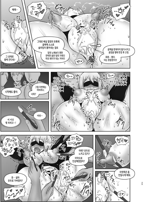 황순전희 엘세인 ~치학의 노예섬~(煌盾戦姫エルセイン 恥虐の隷獄島・韓国語版)