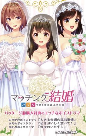 マッチング結婚 ~アプリで見つける最高の花嫁~ ドラマDLC