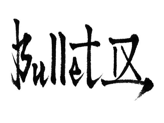 Bullet Ⅸ