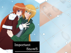 Important SnowS [MirrorWorld]