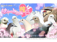 Hatoful Boyfriend: complete edition (JP) [MIST[PSI]PRESS]