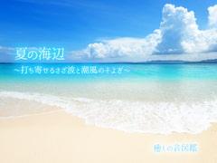 【ASMR環境音】夏の海辺 〜打ち寄せるさざ波と潮風のそよぎ〜