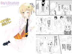 Boy's Structure 男性のしくみ