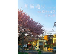 Tsukineko Street Vol.2164 [newmoon teaparty]