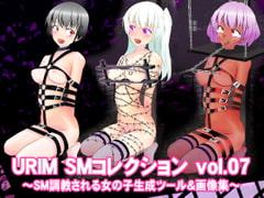 URIM_SMコレクション_vol.07 ~SM調教される女の子生成ツール&画像集~
