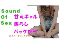 Sound Of Sex-甘えん坊ギャルを焦らして焦らしてバイノーラルマイクをつけてバックから犯す! HQバイノーラル/ASMR/催眠音声/音フェチ - Product Image
