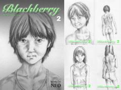Blackberry 2(ブラックベリー2)