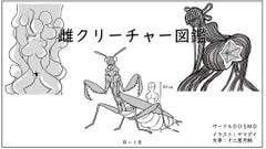 雌クリーチャー図鑑Vol.1