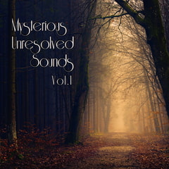 Mysterious Unresolved Sounds Vol.1 [bitter sweet entertainment]
